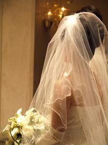 20081011-1.jpg