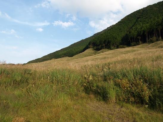 2011-09-19-9.jpg